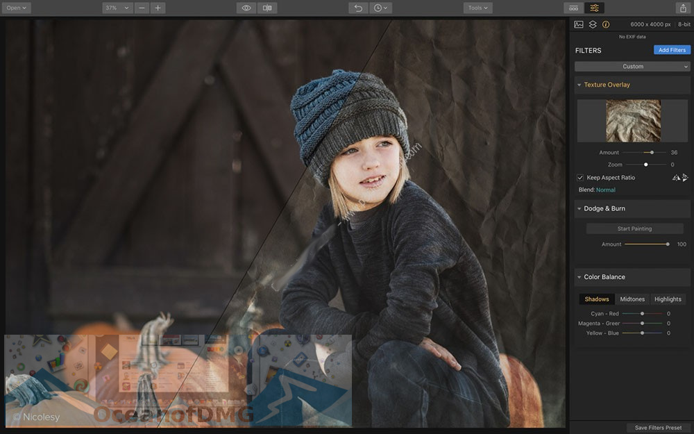 Luminar 2018 v1.0.1 for Mac Latest Version Download
