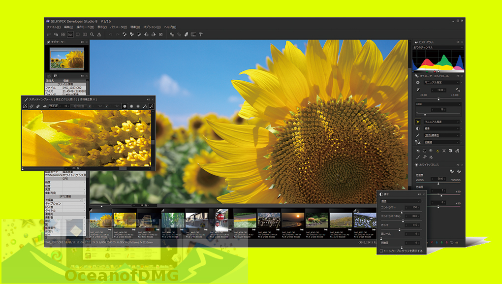 SILKYPIX Developer Studio Pro 8.0.16.0 Offline Installer Download