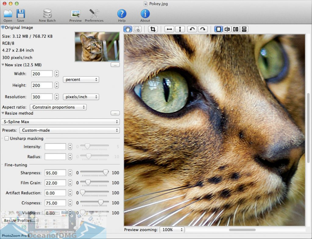 PhotoZoom Pro for Mac Latest Version Download-OceanofDMG.com