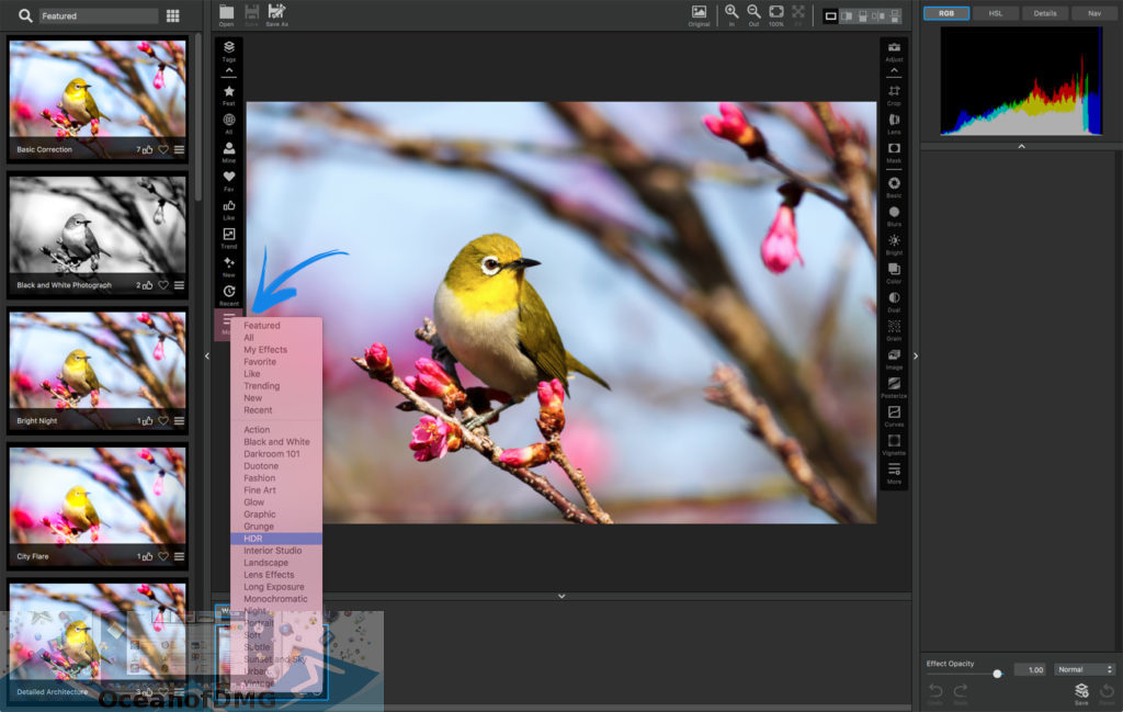 Topaz Photoshop Plugins for Mac Offline Installer Download-OceanofDMG.com