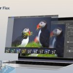 Download Luminar Flex for MacOS X