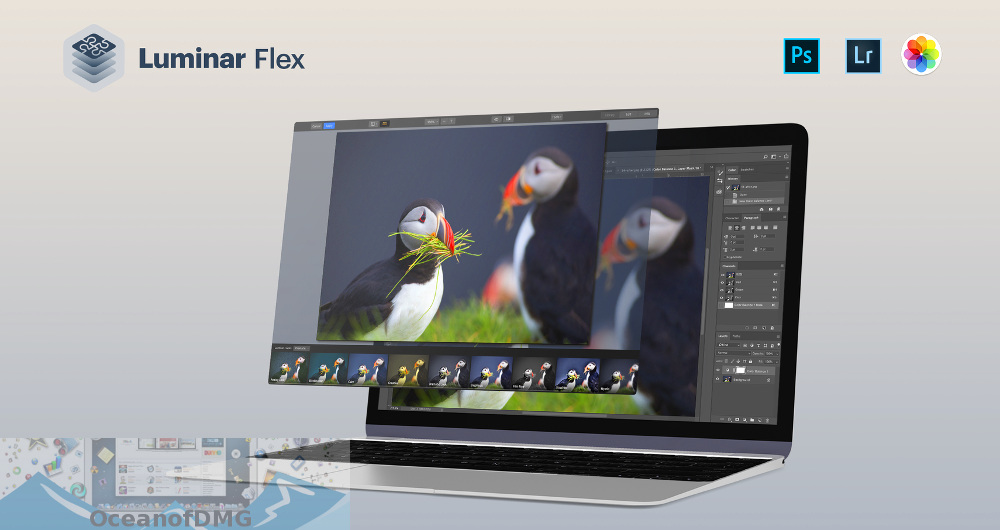 Luminar Flex for Mac Free Download-OceanofDMG.com
