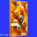 Download Maxon Cinema 4D R21 for Mac