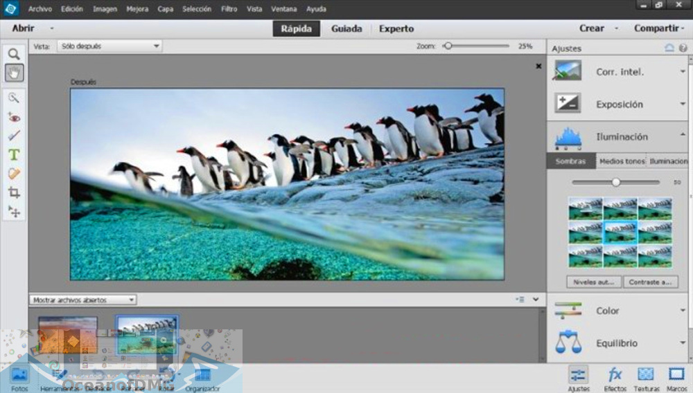 Adobe Photoshop Elements 2020 for Mac Direct Link Download-OceanofDMG.com
