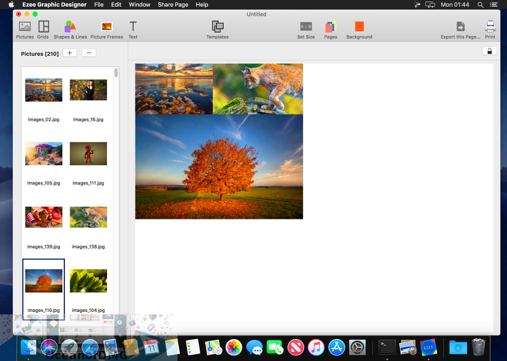 Ezee Graphic Designer for Mac Latest Version Download-OceanofDMG.com